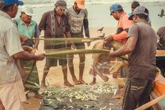 Viele Fischer schätzen den Fang von Fischen von den Netzen hinter Wasser vom Indischen Ozean Stockfotos