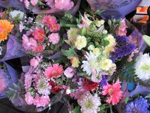 Viele frischen attraktiven bunten Blumenblumensträuße auf Anzeige Lizenzfreie Stockfotografie