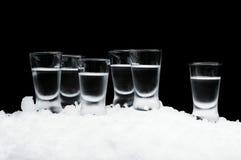 Viele Gläser Wodka stehend auf Eis auf schwarzem Hintergrund Stockfotografie