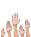 Viele Hände heben hoch oben an Stockfotografie