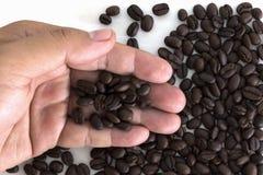 Viele Kaffeebohnen an Hand auf weißem Hintergrund Stockfotografie