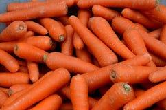 Viele Karotten in einem Stapel Stockfotos