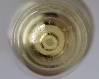 Viele kleinen Blasen in einem Champagnerglas Lizenzfreie Stockbilder