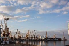 Viele Kräne in der Frachtseestation Lizenzfreie Stockfotos