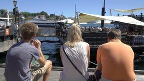 Viele Leute, die auf Promenade Aker Brygge in Oslo, Norwegen gehen stock video