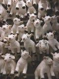 Viele lustigen Ziegen als Symbol von neuem 2015-jährigem Stockfotografie