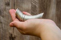 Viele Münzen in der weiblichen Hand lizenzfreie stockfotos