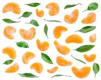 Viele Mandarinenscheiben und -blätter in den verschiedenen Winkeln auf weißem backg Stockbilder