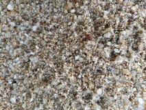 viele nasser Sand und Felsenkies stockfotos