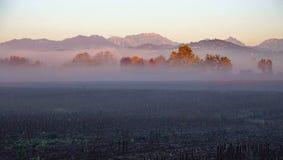 Viele Nebel auf den Gebieten kultiviert an einem kalten Herbsttag Stockfotos