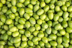 Viele neuen grünen rohen Oliven Stockfoto