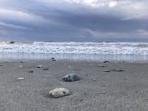 Viele Oberteile auf dem tropischen Strand lizenzfreie stockfotografie