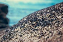 Viele Oberteile auf einem Hintergrund von blauem Meer Lizenzfreies Stockfoto