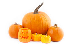 Viele orange Halloween-Kürbise Lizenzfreies Stockbild
