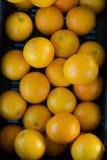 viele Orangen in einem Kasten Lizenzfreie Stockfotos