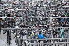 Viele Reihen von Parkfahrrädern lizenzfreie stockbilder