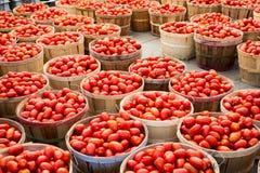 Viele Rom-Tomaten in den Körben Stockfotos