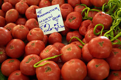 Viele roten reifen Tomaten Lizenzfreie Stockfotografie