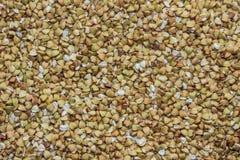 Viele Samen des grünen Buchweizens (können als Hintergrund verwendet werden) Lizenzfreies Stockfoto