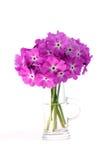 Viele schönen rosafarbenen Blumen Stockfotografie