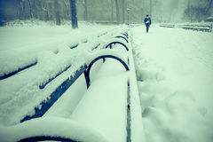 Viele Schnee Lizenzfreies Stockbild