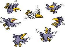 Viele Schwarzkrähen und nur weiße Krähe Lizenzfreie Stockbilder