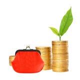 Viele Spalten von Goldmünzen, von rotem Geldbeutel und von Grünpflanze Lizenzfreie Stockbilder