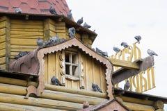 Viele Tauben, die auf dem Dach des Hauses sitzen Lizenzfreie Stockfotos