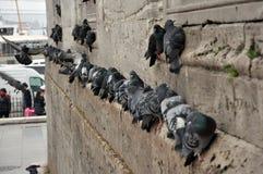 Viele Tauben, die auf Wand sitzen Lizenzfreies Stockfoto