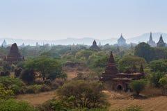 Viele Tempel in Bagan am sonnigen Tag Lizenzfreie Stockbilder