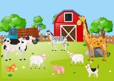 Viele Tiere im Hof Lizenzfreies Stockfoto