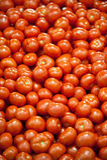 Viele Tomaten Lizenzfreie Stockfotografie