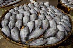 Viele trockenen Gourami fishs auf Bambusplatten Stockfotos