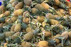 Viele von Ananas im Markt Stockfotos