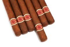 Viele Zigarren auf dem Tisch Lizenzfreies Stockbild
