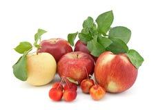 Vielzahl der Äpfel auf weißem Hintergrund Stockfoto