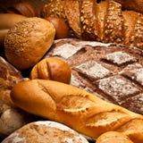 Vielzahl der frischen Brote Stockbild