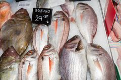 Vielzahl der frischen Fische für Verkauf am Meeresfrüchtemarkt, Palma, Mallorca Stockfotos