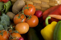 Vielzahl des Gemüses Stockbild