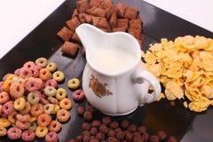 Vielzahl des Getreides mit Milch lizenzfreie stockfotografie