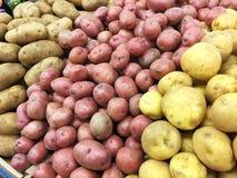 Vielzahl von Kartoffeln für Verkauf Stockfotos