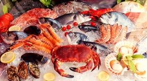 Vielzahl von Meeresfrüchten stockfotografie