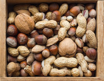 Vielzahl von Nüssen: Erdnüsse, Haselnüsse, Walnüsse, Pistazienhintergrund Stockbild