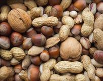 Vielzahl von Nüssen: Erdnüsse, Haselnüsse, Walnüsse, Pistazienhintergrund Lizenzfreie Stockfotografie