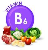 Vielzahl von verschiedenen Nahrungsmitteln mit Vitamin B6 stock abbildung