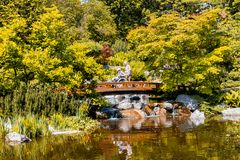 Viena, Austria - 12 de mayo de 2018: Jardín japonés con el puente de madera y la cascada hermosa fotos de archivo libres de regalías