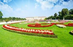 Viena, Austria - los jardines de Schoenbrunn florecen las formas, una UNESCO W Imagenes de archivo