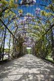 Viena - castelo e túnel de Schonbrunn Imagens de Stock Royalty Free