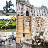 Viena, ?ustria collage Teatro Burgtheater do estado de Viena, Áustria, Burg de Neue, um castelo novo do palácio de Hofburg, museu imagens de stock