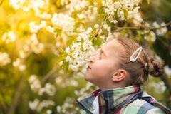 ¡Viene el gusto la primavera! fotos de archivo